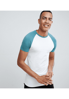 bb2f74a4 ASOS DESIGN Tall muscle fit raglan t-shirt with contrast sleeves -  W/urchmarl