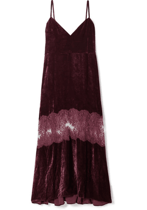 Stella McCartney - Kelsey Lace-paneled Velvet Dress - Merlot