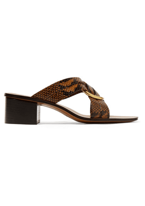 Chloé - Rony Embellished Snake-effect Leather Mules - Snake print