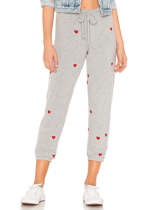 Chaser Love Knit Slouchy Pant in Gray. Size XS.