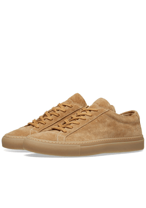Woman by Common Projects Original Achilles Low Suede Amber