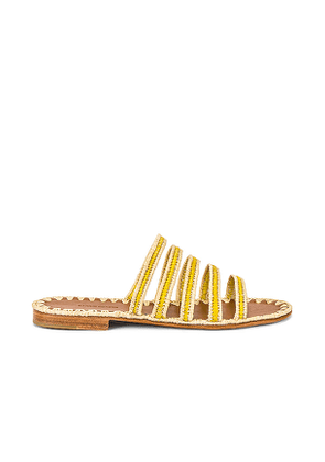 Carrie Forbes Asmaa Sandal in Yellow. Size 37,38,39,40.