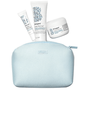 Briogeo Scalp Revival Scalp Soothing Travel Kit in Beauty: NA.