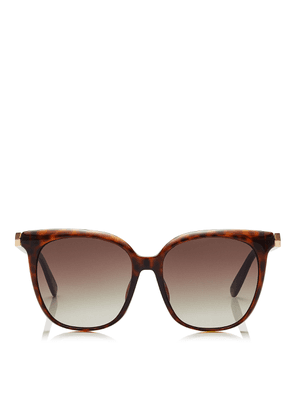 WILMA Brown Shaded Square Sunglasses with Havana Frame