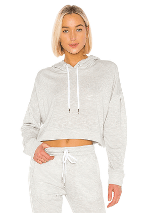 ALALA Volt Hoodie in Gray. Size M,S,XS.
