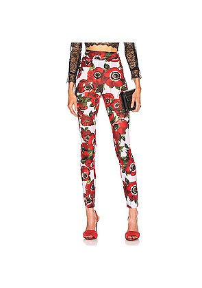 Dolce & Gabbana Floral Pant in Floral,Red,White