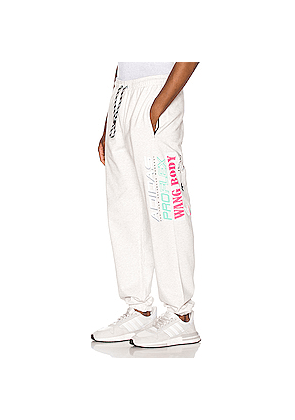 adidas by Alexander Wang Graphic Joggers in Gray