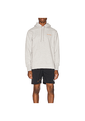 Aime Leon Dore Distressed Hoodie in Gray