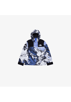 Stadium Goods Supreme x The North Face mountain print parka
