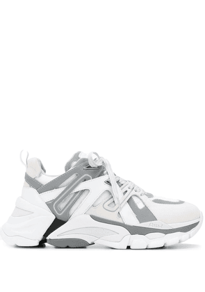 Ash panelled sneakers - White