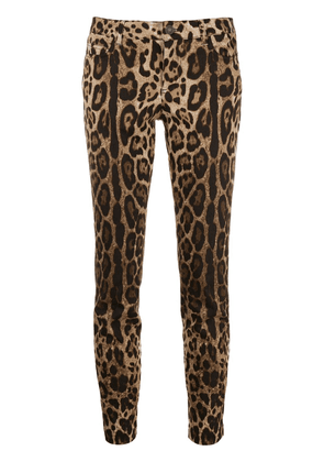 Dolce & Gabbana leopard print skinny trousers - Brown