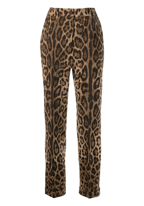 Dolce & Gabbana leopard print tailored trousers - Brown