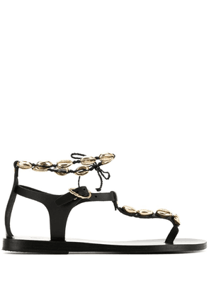 Ancient Greek Sandals chrysso shell flat sandals - Black