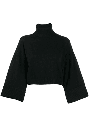 P.A.R.O.S.H. knit cropped roll neck jumper - Black