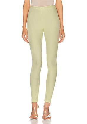 OFF-WHITE Ribbed Legging in Yellow - Yellow. Size 36 (also in 38,40,42,44).