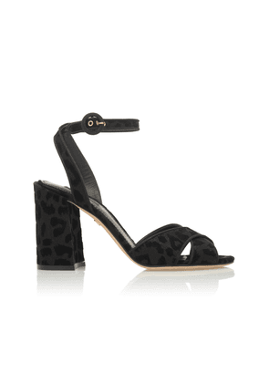 Dolce & Gabbana Black Leopard Faille Sandals