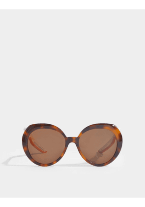Hybrid Butterfly Sunglasses in Brown Acetate with Brown Lenses