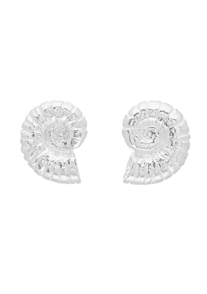 Silver Ammonite Shell Stud Earrings