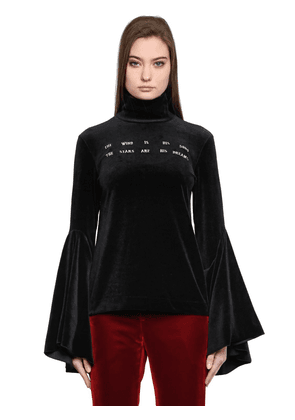 Embroidered Velvet Turtleneck Top