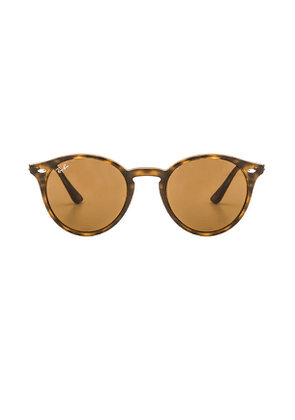 Ray-Ban Round Classic in Brown.