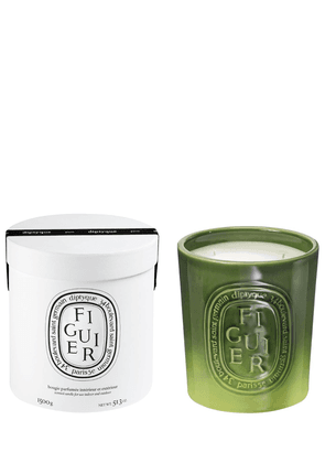 1500gr Figuier Scented Candle