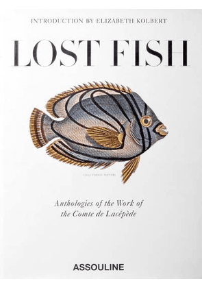 Multicolor Women's Lost Fish