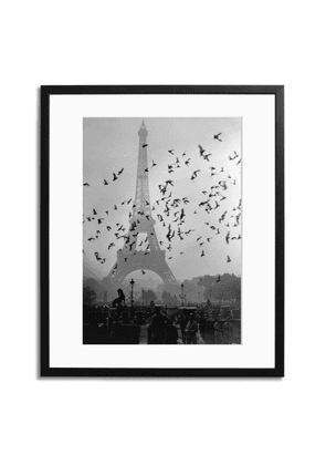Sonic Editions Eiffel Tower Pigeons