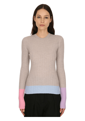 Merino Wool Rib Knit Sweater