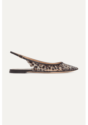 Gianvito Rossi - Patent Leather-trimmed Leopard-print Pvc Slingback Point-toe Flats - Leopard print