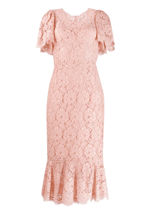 Dolce & Gabbana floral lace fitted dress - PINK