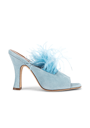 Paris Texas Suede Square Toe Mule with Marabou Feathers in Light Blue - Blue. Size 37 (also in 36).