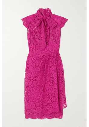 Dolce & Gabbana - Pussy-bow Corded Cotton-blend Lace Dress - Pink