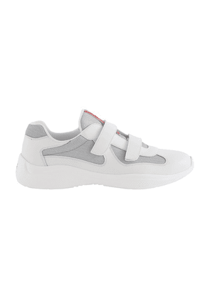 New America's cup scratch sneakers