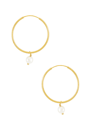 The M Jewelers NY The Hanging Lia Pearl Earrings in Metallic Gold.