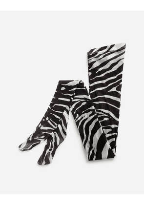Dolce & Gabbana Collection - ZEBRA PRINT TIGHTS IN TULLE ANIMAL PRINT