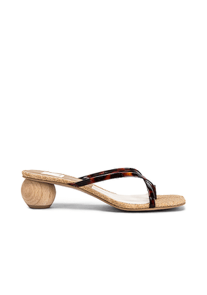 Dolce Vita Betsey Sandal in Brown. Size 6,6.5,7.5,8,8.5,9,9.5.