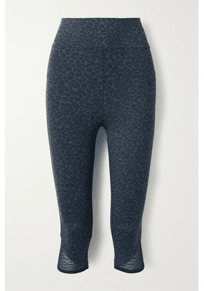 Eres - Vitali Cropped Mesh-trimmed Leopard-print Stretch-knit Leggings - Blue