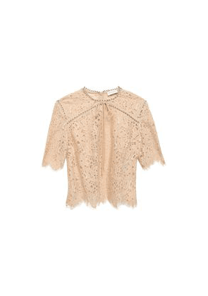 Sandro Crystal-embellished Scalloped Lace Top Woman Beige Size 3