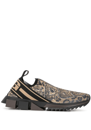 Dolce & Gabbana Sorrento leopard-print sneakers - Brown