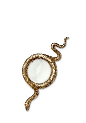 Small Snake Magnifying Glass