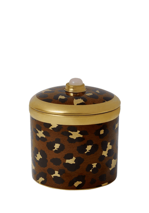 Safari Candle