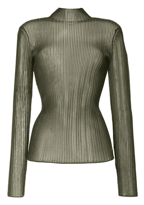 Dion Lee sheer long-sleeve knit top - Green