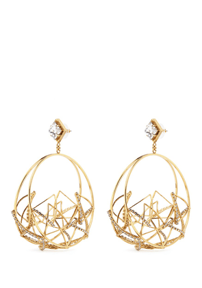 'Third Dimension' Swarovski crystal caged hoop earrings