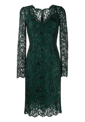 Dolce & Gabbana fitted lace dress - Green