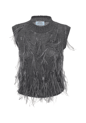 Feather Embellished Wool Knit Top