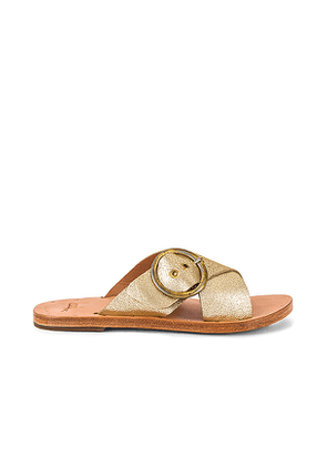 Beek Crow Sandal in Metallic Gold. Size 8.