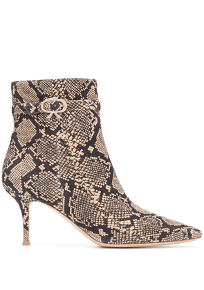 Gianvito Rossi Riccy snakeskin-effect ankle boots - Black