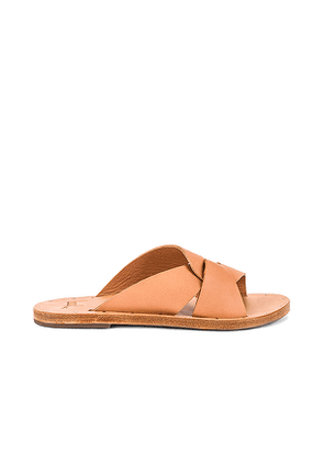 Beek Pigeon Sandal in Brown. Size 7,8.