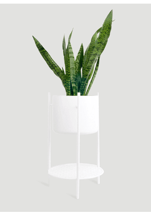 XLBoom Ent Small Plant Stand in White