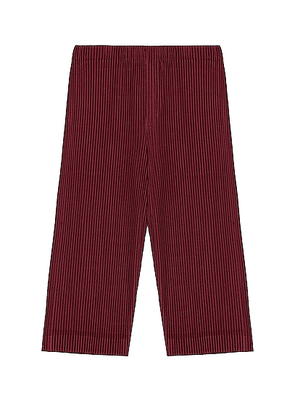 Homme Plisse Issey Miyake Colorful Pleat Crop Straight Pant in Wine Red - Red. Size 2 (also in 3).